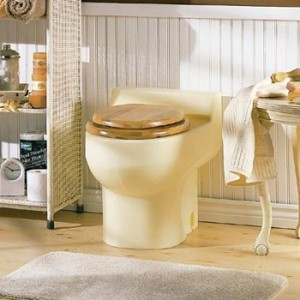 Composting toilets can be as simple as a 5-gallon bucket with a toilet seat or as extravagant as this. Credit: http://eartheasy.com/blog/wp-content/uploads/2010/10/composting-toilet.jpg